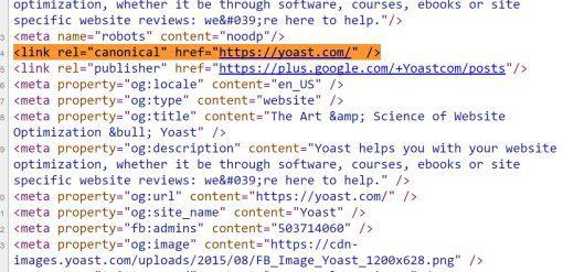 La importancia de las URL canónicas en SEO